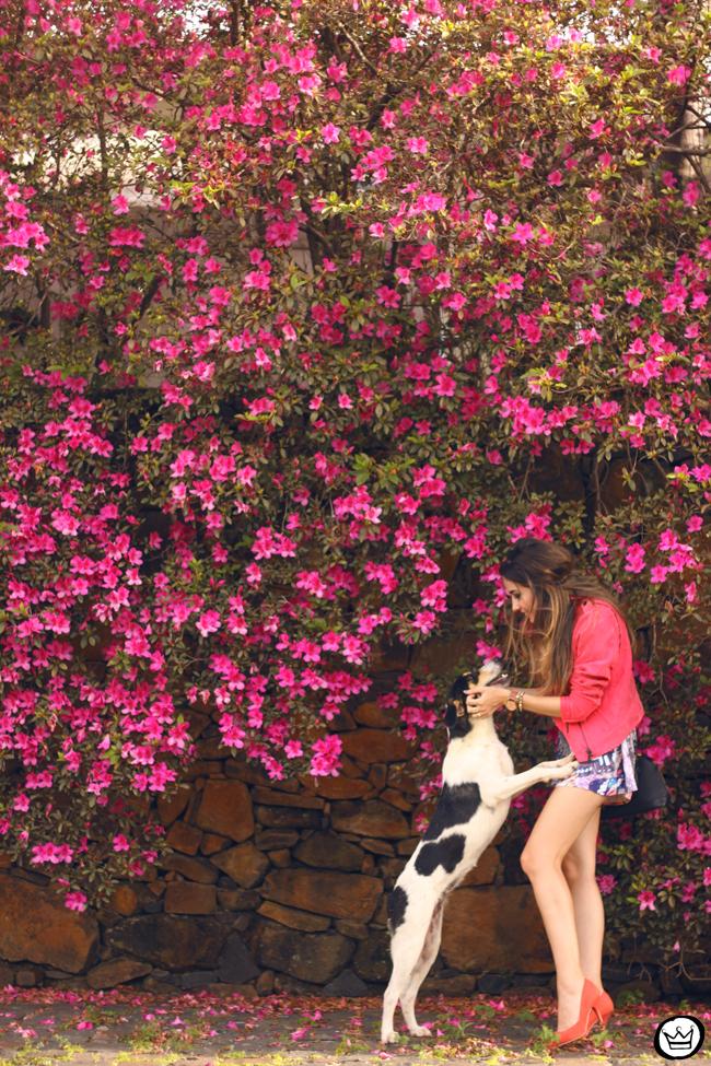 FashionCoolture - 17.08.2015 look du jour Shoulder macaquinho borboletas pink (3)