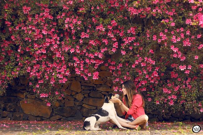 FashionCoolture - 17.08.2015 look du jour Shoulder macaquinho borboletas pink (6)