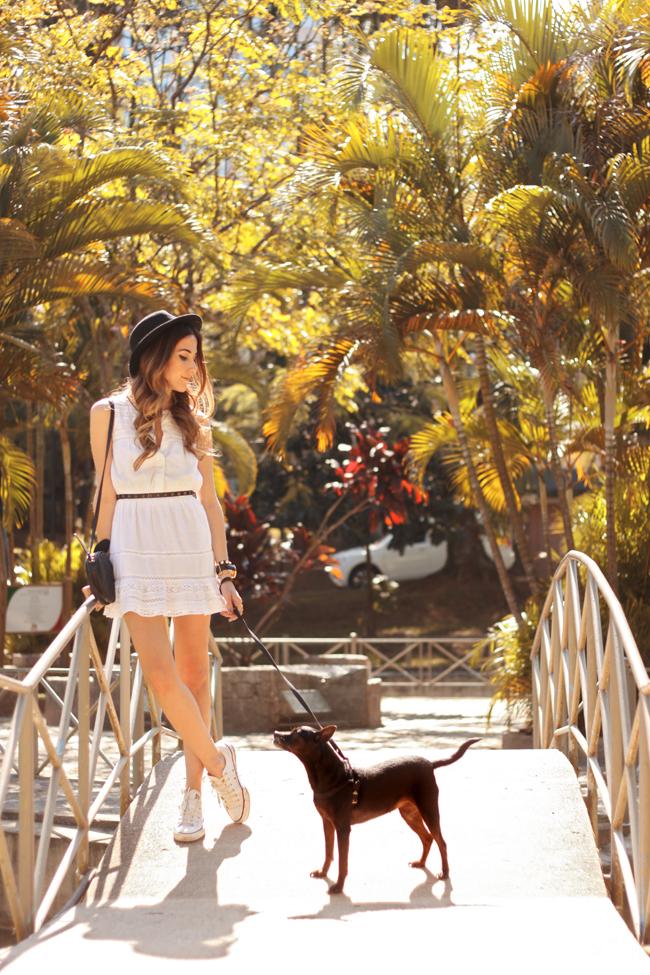 FashionCoolture - 23.09.2015 look du jour Gap white dress Converse (1)
