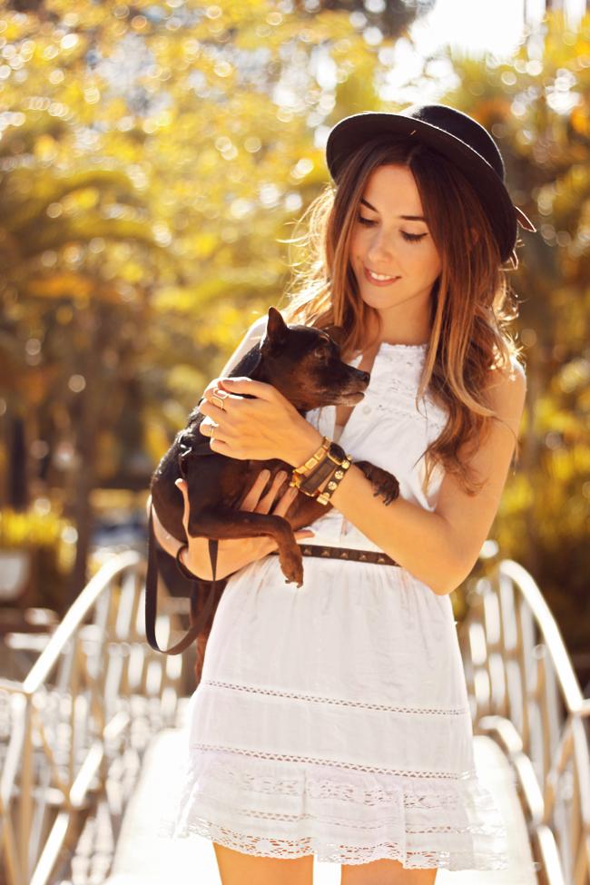 FashionCoolture - 23.09.2015 look du jour Gap white dress Converse (2)