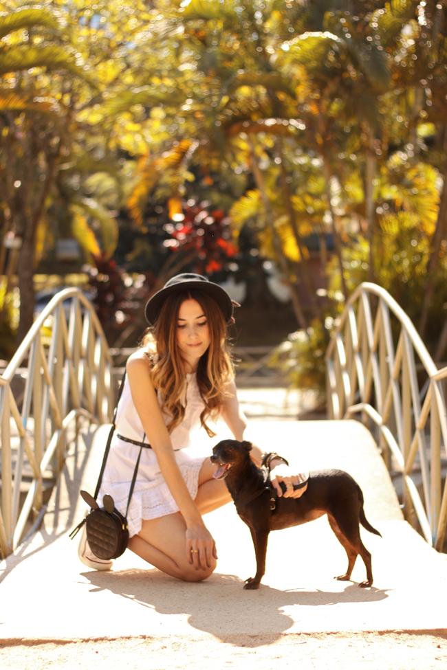 FashionCoolture - 23.09.2015 look du jour Gap white dress Converse (5)
